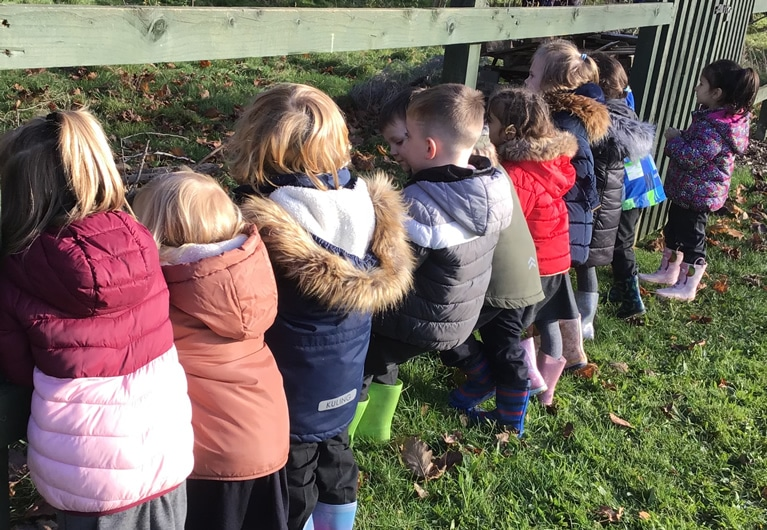 Visiting Forest School
