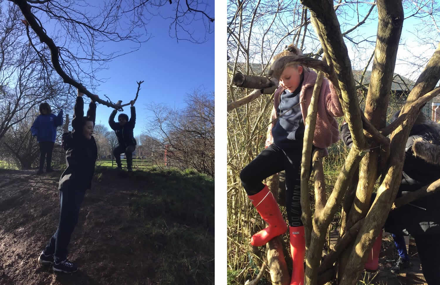 Y5-6 pupils in Forest School